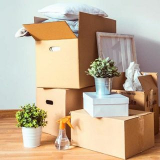 How To Successfully Move Out Of Your Parents' House